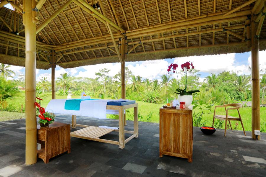 Villa Abirama Ubud